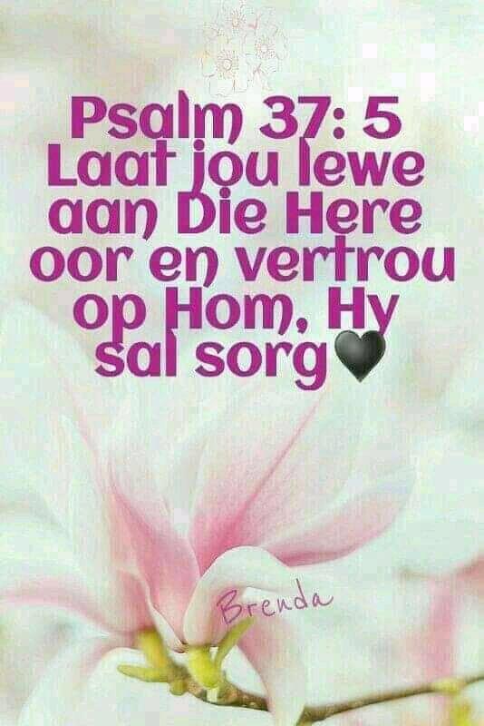 FB_IMG_15700723459814534.jpg